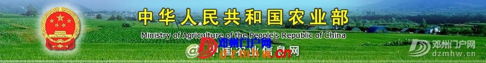 河南邓州涌现百多家股份畜牧联合体 - 邓州门户网|邓州网 - banner.jpg