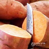红薯的养生功效是什么?如何正确食用红薯? - 邓州门户网|邓州网 - 160247rwcitui99obbt9y5.jpg