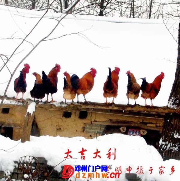 李明申摄影获奖作品欣赏(之一) - 邓州门户网|邓州网 - 2013051517323861.jpg