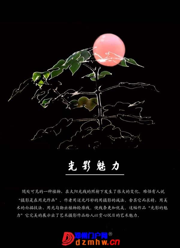 李明申摄影获奖作品欣赏(之一) - 邓州门户网|邓州网 - 2013051517391383.jpg