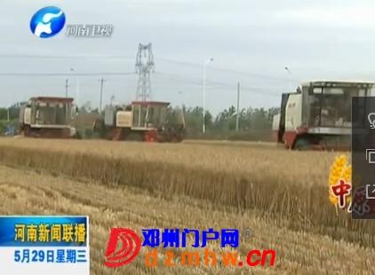 难言邓州:小麦丰收 秸秆还田
