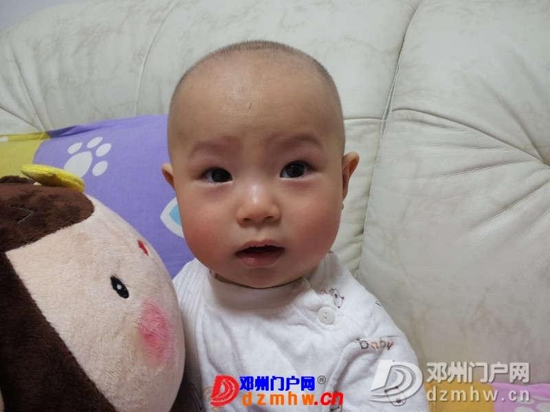 我家的小宝宝一周岁啦!登场看看萌不萌 - 邓州门户网 邓州网 - 322408_137469182579248512.jpg