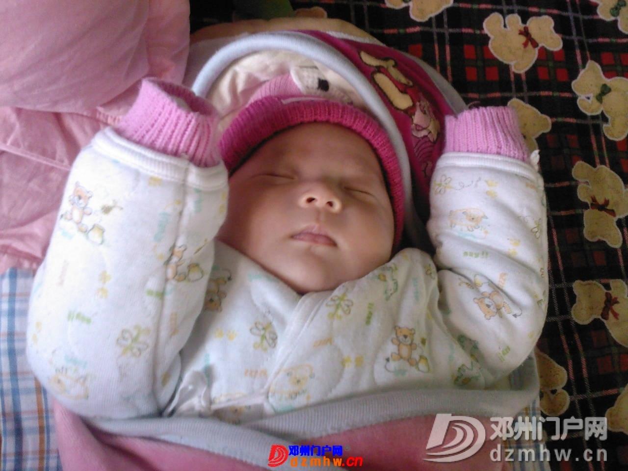 我的宝宝四十六天了,来晒一晒,看谁认识,呵呵 - 邓州门户网|邓州网 - 1f02a57q185b6.jpg