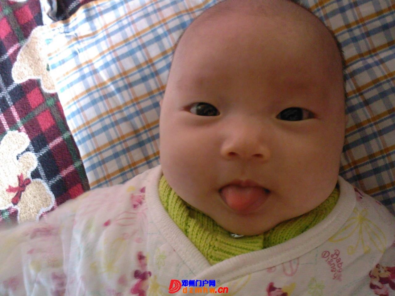 我的宝宝四十六天了,来晒一晒,看谁认识,呵呵 - 邓州门户网 邓州网 - 1001331q15ff3.jpg