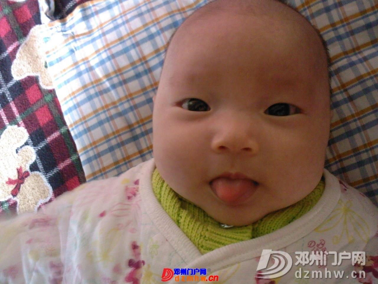 我的宝宝四十六天了,来晒一晒,看谁认识,呵呵 - 邓州门户网|邓州网 - 1001331q15ff3.jpg