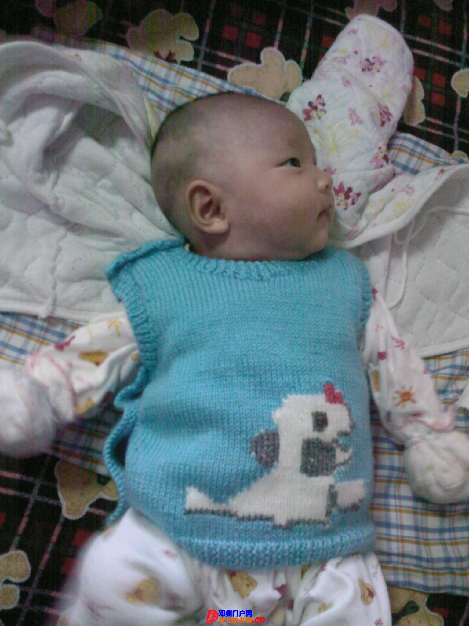 我的宝宝四十六天了,来晒一晒,看谁认识,呵呵 - 邓州门户网 邓州网 - 1b01958q15ef8.jpg