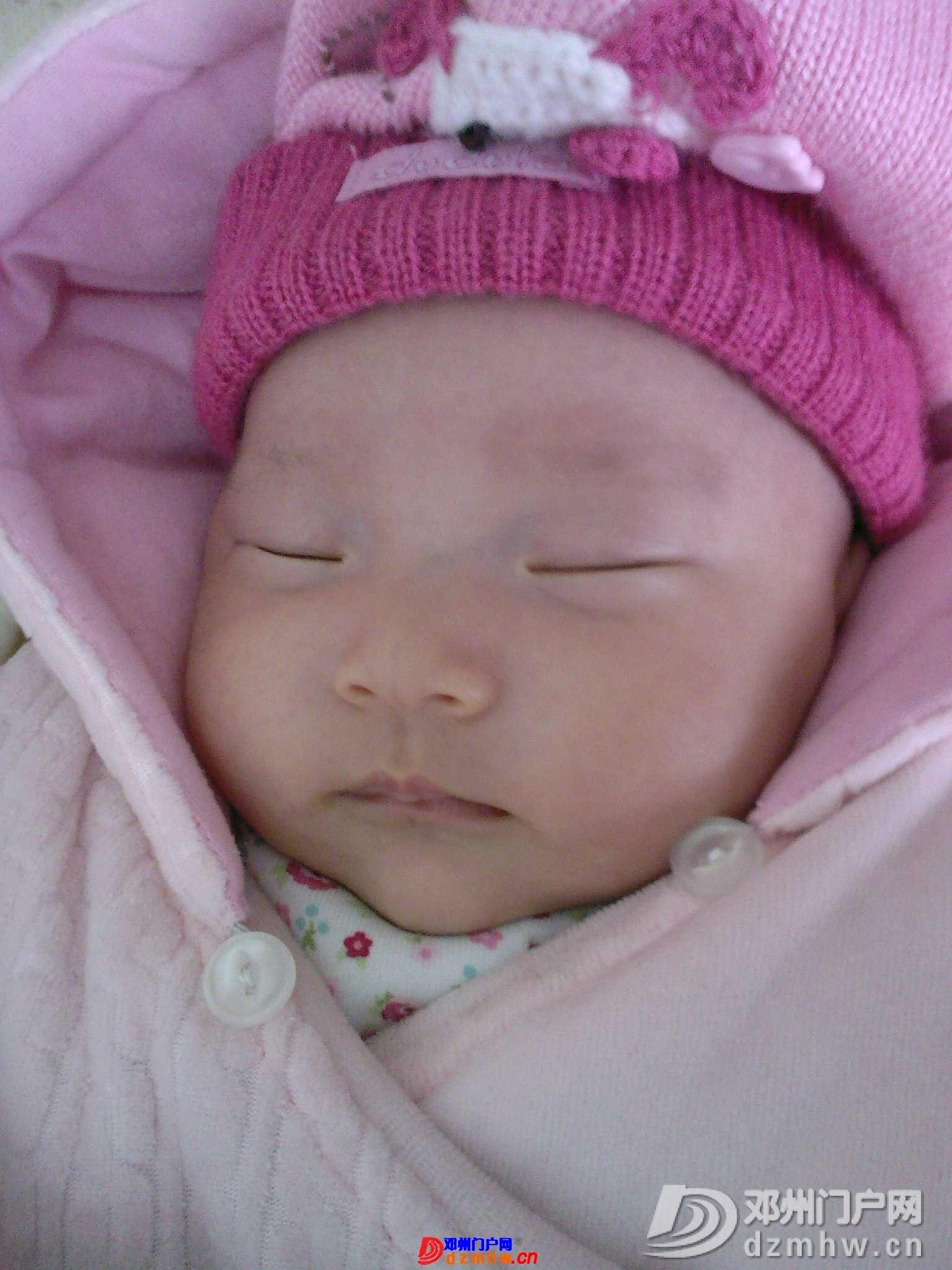 我的宝宝四十六天了,来晒一晒,看谁认识,呵呵 - 邓州门户网|邓州网 - 1702032q184f3.jpg