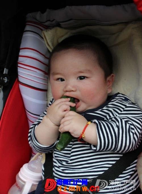 看我的表情丰富吧,我可是表情影帝呀 - 邓州门户网|邓州网 - 304107_136429241384328347.jpg