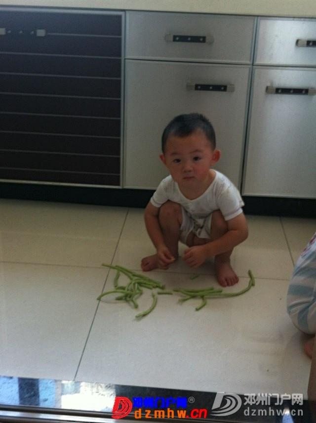 我家可爱的双胞胎宝宝,家里有两个在活宝,生活如此的多娇呀 - 邓州门户网|邓州网 - 325603_178a1376715922f0698745a4997f0.jpg
