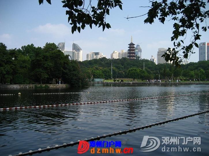 我的温州,杭州之行,把美图分享一下!! - 邓州门户网|邓州网 - 63473336_12823014_middle.jpg