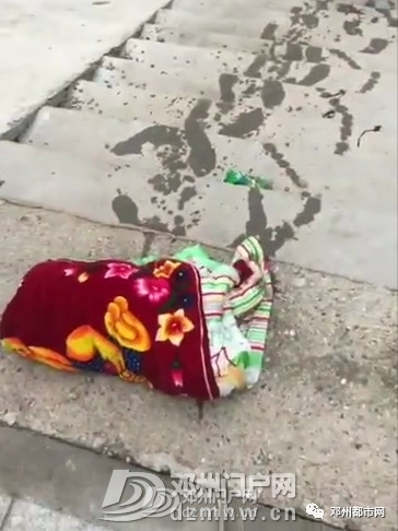 痛心!邓州七里河里发现弃婴!怎么怎么狠心! - 邓州门户网|邓州网 - 463ce33a85337e50107f4f976e8c5657.jpg