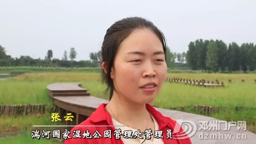 天!原来咱邓州的湿地公园来头这么大 - 邓州门户网|邓州网 - 640.webp21.jpg