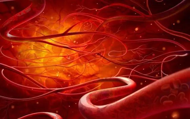 邓州杨氏微排栓---全国独创,拯救心脑血管疾病患者的最快捷径 - 邓州门户网|邓州网 - 640.webp.jpg