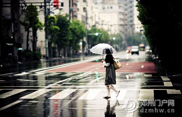 台风天别担心,学会这几点,保证自身安全! - 邓州门户网|邓州网 - 1279600989949138a3924c47c7efdec56a56af38c3.jpg