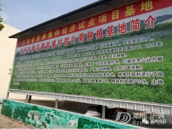 邓州赵楼村:开遍党建幸福花 - 邓州门户网 邓州网 - 640.webp8.jpg