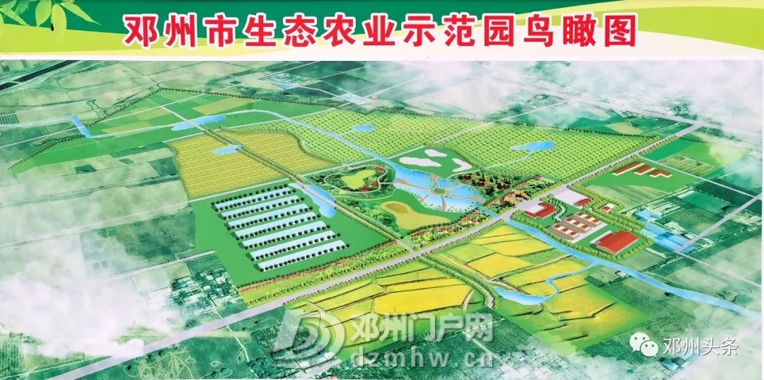 邓州国家级现代农业示范区项目今日开工 - 邓州门户网|邓州网 - 640.webp11.jpg