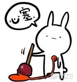 邓州高清无码大片曝光!背影也认得你! - 邓州门户网|邓州网 - 640.webp11.jpg