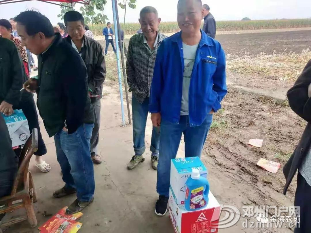 【金海动态】新版金海13号 闪亮邓州市场 - 邓州门户网|邓州网 - 640.webp41.jpg
