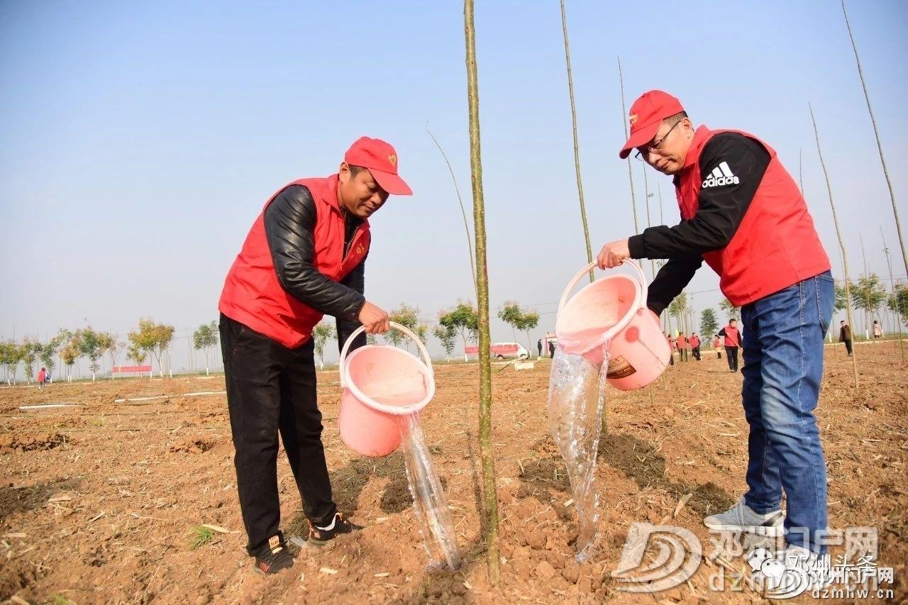 今天邓州市2019年冬季义务植树活动你去了吗? - 邓州门户网|邓州网 - a87f52a5fad8e6346b2d17b7cc78d169.jpg