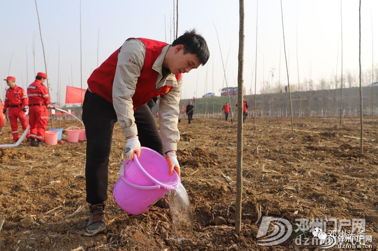 今天邓州市2019年冬季义务植树活动你去了吗? - 邓州门户网|邓州网 - 5f43d38a10182c55d0fa1229aa36e4ac.jpg