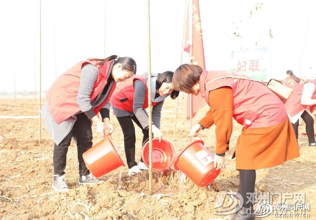 今天邓州市2019年冬季义务植树活动你去了吗? - 邓州门户网|邓州网 - 1a0702c4e302a97fae9eec4aa0add745.jpg