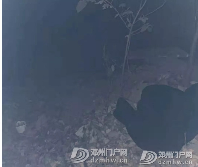邓州一15岁男生失踪,口袋发现遗书,正全力搜寻! - 邓州门户网|邓州网 - 156548412a7576312cfcdc34fd84f7af.jpg