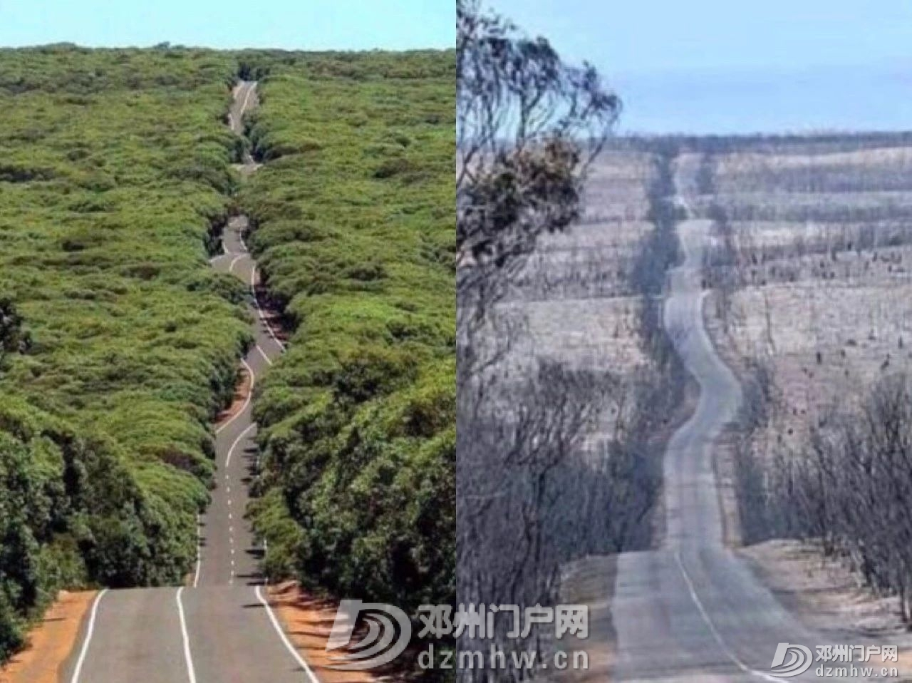 没有澳洲这场大火,我都不知道中国33年前这么厉害! - 邓州门户网|邓州网 - 10cdf9013c2d9fd3e26d267c163d243b.jpg