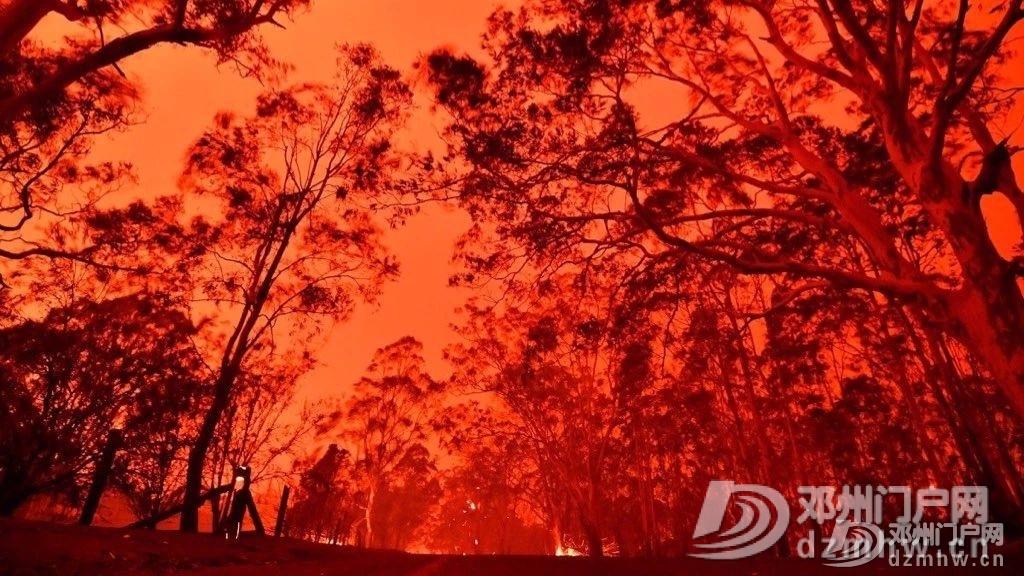 没有澳洲这场大火,我都不知道中国33年前这么厉害! - 邓州门户网|邓州网 - 02fefc2b469a5ab5f5259cccab1f4dee.jpg