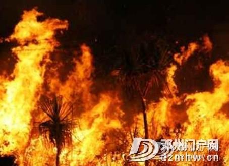 没有澳洲这场大火,我都不知道中国33年前这么厉害! - 邓州门户网|邓州网 - 9c40b78c4cffc8a4cbe762275aa51e49.jpg