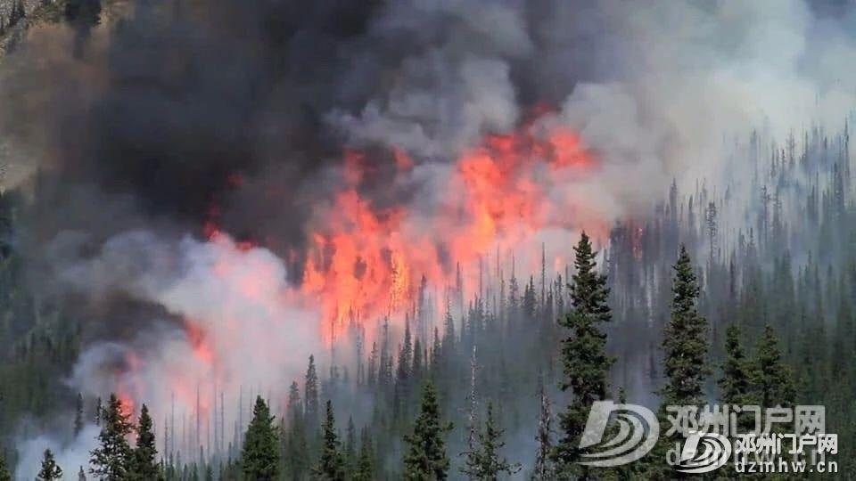 没有澳洲这场大火,我都不知道中国33年前这么厉害! - 邓州门户网|邓州网 - 37658a92e5ffd8c48aa5453a9421f94b.jpg