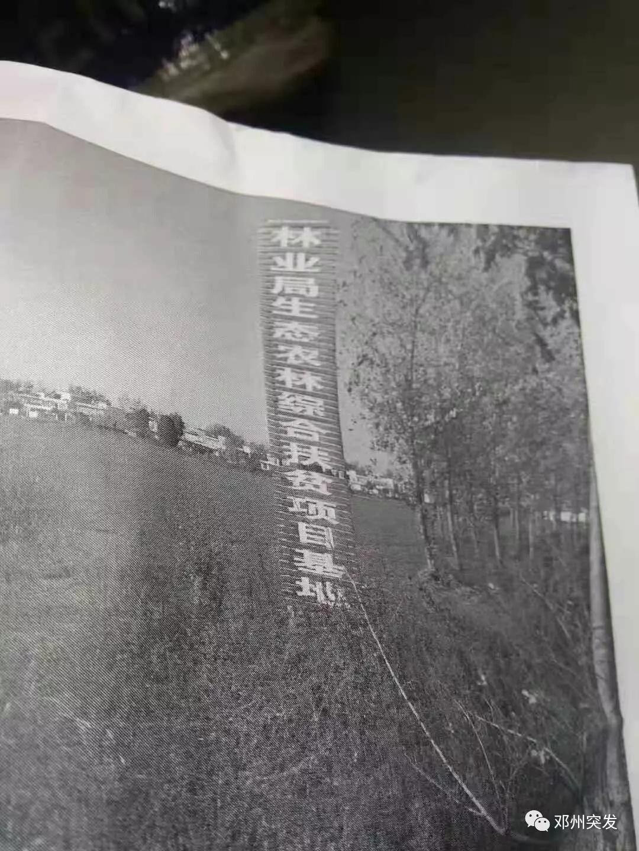鄧州:羅莊鎮肖營村村民投訴市林業局農林生態綜合扶貧項目基地拖欠農民工工資款