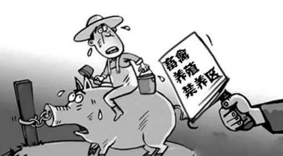 鄧州市人民政府關于調整鄧州市畜禽養殖禁養區范圍的通