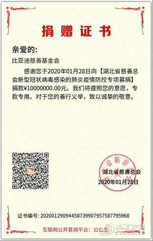 比亚迪新能源车在194个城市市占率第一 - 邓州门户网|邓州网 - image12.png