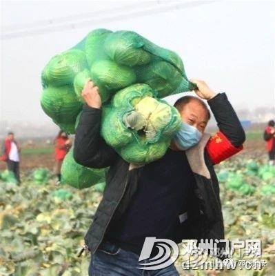 邓州现役军人30吨蔬菜驰援湖北黄冈! - 邓州门户网 邓州网 - 5b32486068f13c4994257b0b2882fd3d.jpg