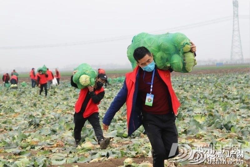 邓州现役军人30吨蔬菜驰援湖北黄冈! - 邓州门户网 邓州网 - 5c1462b6646cca5fc7e75331f73c79e3.jpg