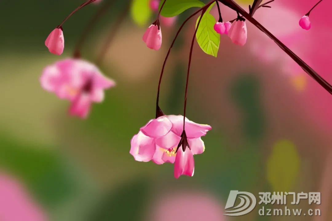 世界名著最动人的8句话,陪你静候春天 - 邓州门户网 邓州网 - 微信图片_20200306071121.jpg