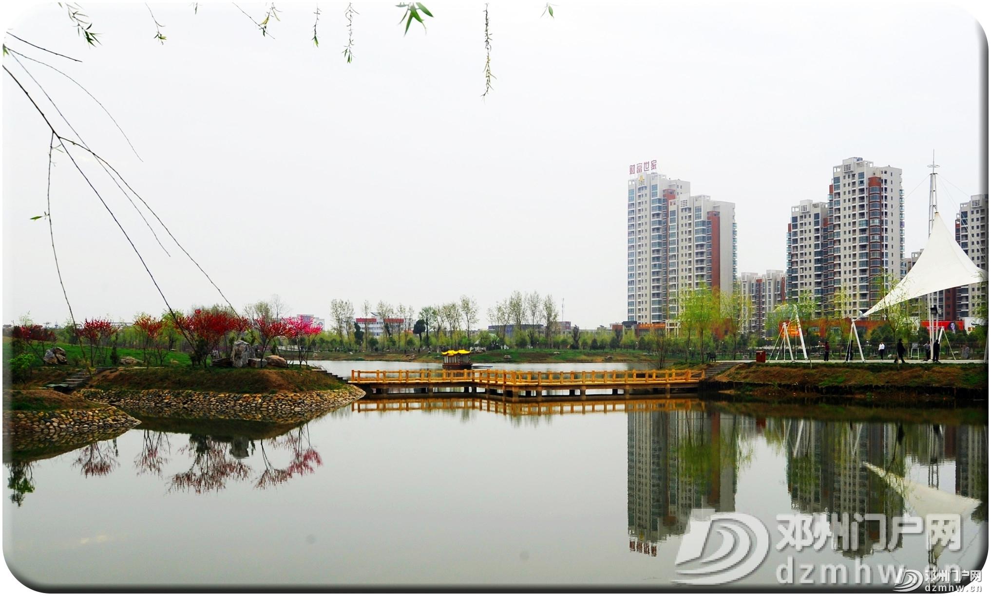 我叫邓州,这是我的最新简历,2020年,请多关照! - 邓州门户网|邓州网 - 42a7cbd4736b37690744b245a4c124f5.jpg