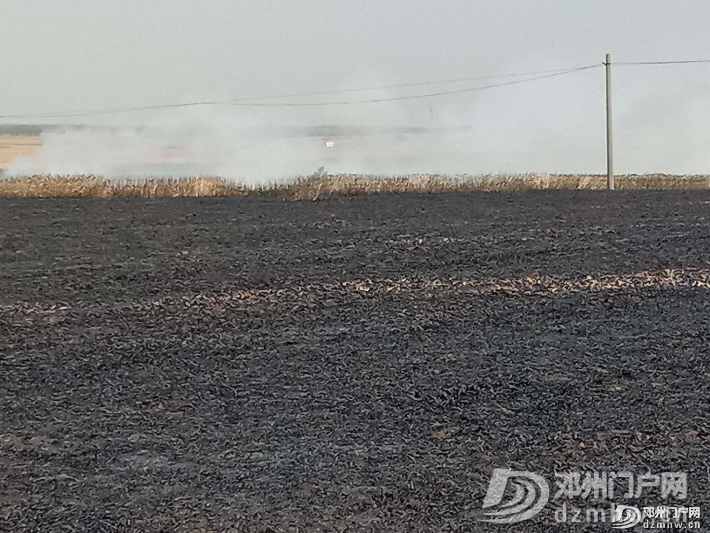 痛心!邓州又一麦田着火,百亩小麦被烧为灰烬… - 邓州门户网|邓州网 - 03d3600749318e3151eb4793fa9383cd.png