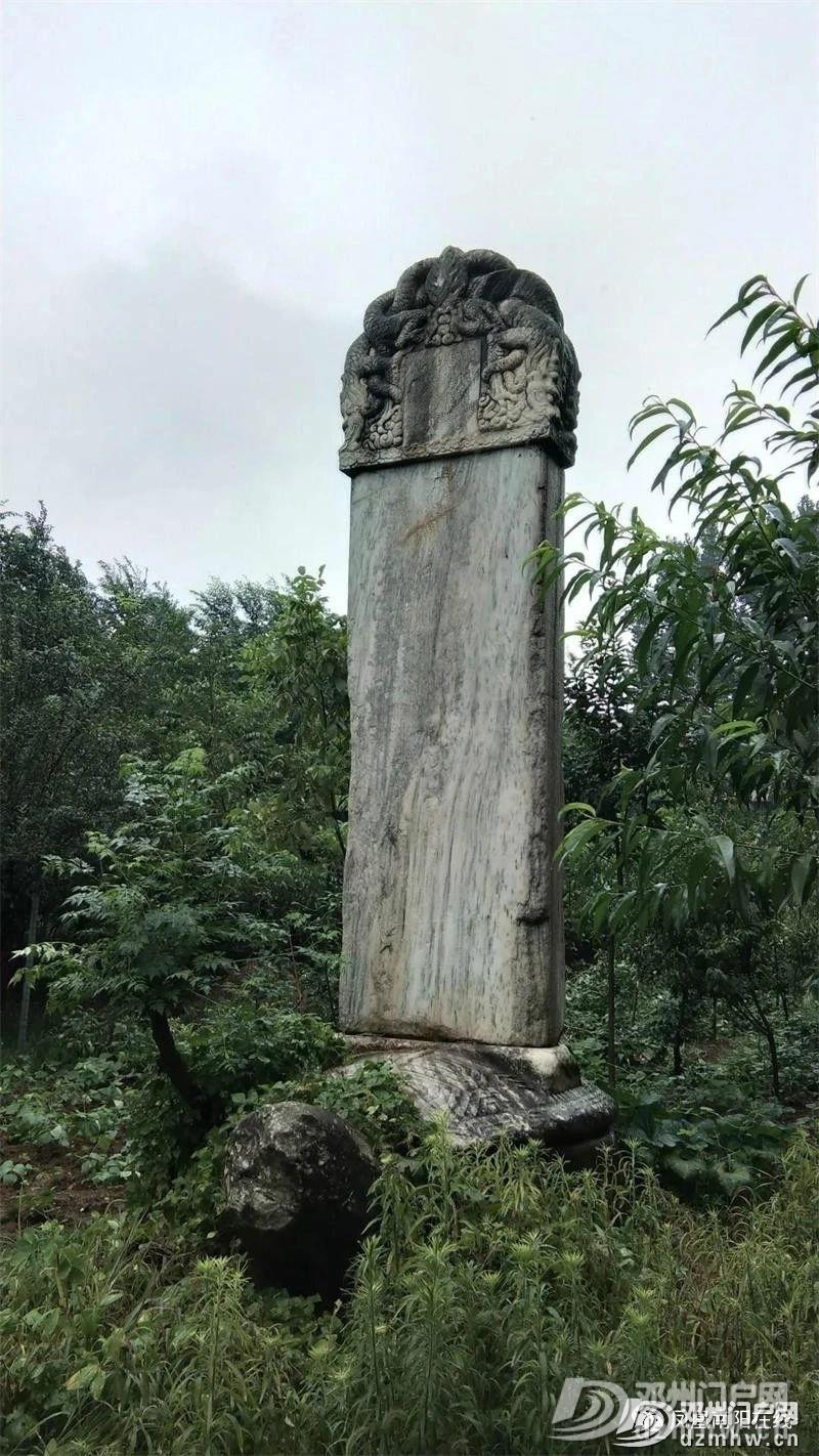 树林里有一龟驮古墓碑:原来是明代邓州籍治世良臣之墓! - 邓州门户网|邓州网 - 0286763b11c9b127faec1085372d331c.jpg