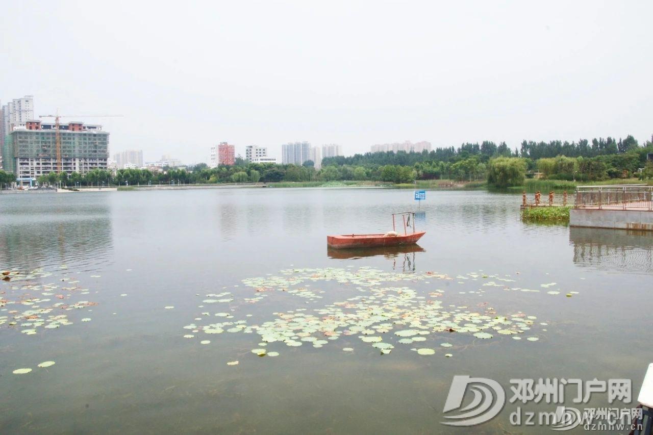 惊奇!邓州这个湖,你见过吗? - 邓州门户网|邓州网 - 2930c788275a43e2eaef32df12383fef.jpg