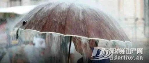 暴雨!大暴雨!邓州雨要再下15天!即将划船出门… - 邓州门户网|邓州网 - 2ef9e0f271d1823daca80b4d32c247b6.jpg