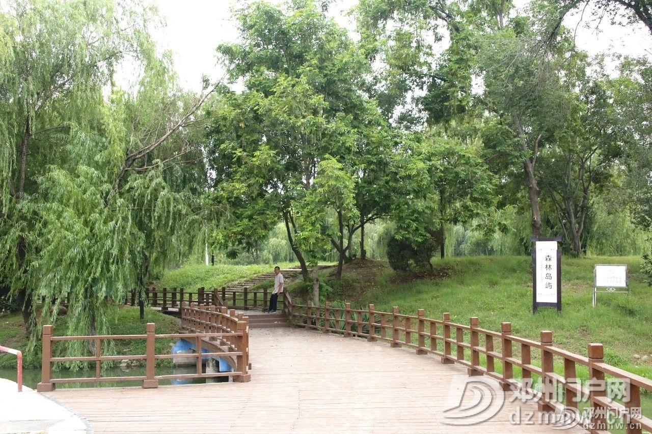 速来围观!暴雨过后的邓州人民公园竟发生了这种变化... - 邓州门户网|邓州网 - a55959bd6d7bc5d796e1520577536970.jpg