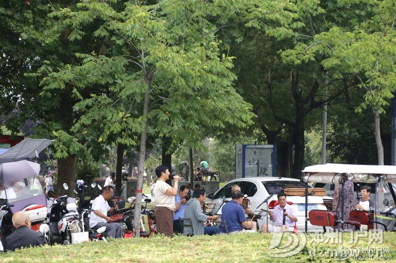 速来围观!暴雨过后的邓州人民公园竟发生了这种变化... - 邓州门户网|邓州网 - d648bca0add0723773457596a7352417.jpg
