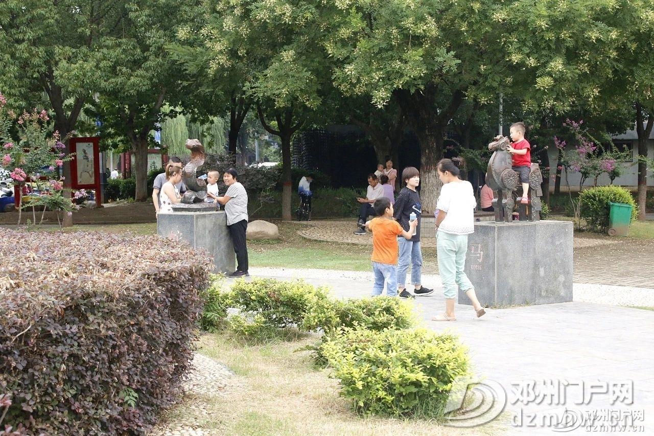 速来围观!暴雨过后的邓州人民公园竟发生了这种变化... - 邓州门户网|邓州网 - 48629ddafcb3676f142c24f1e23407dc.jpg