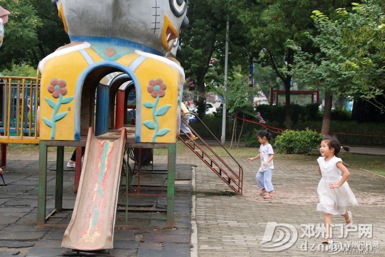 速来围观!暴雨过后的邓州人民公园竟发生了这种变化... - 邓州门户网|邓州网 - 85127078201942093a4700988fb02684.jpg