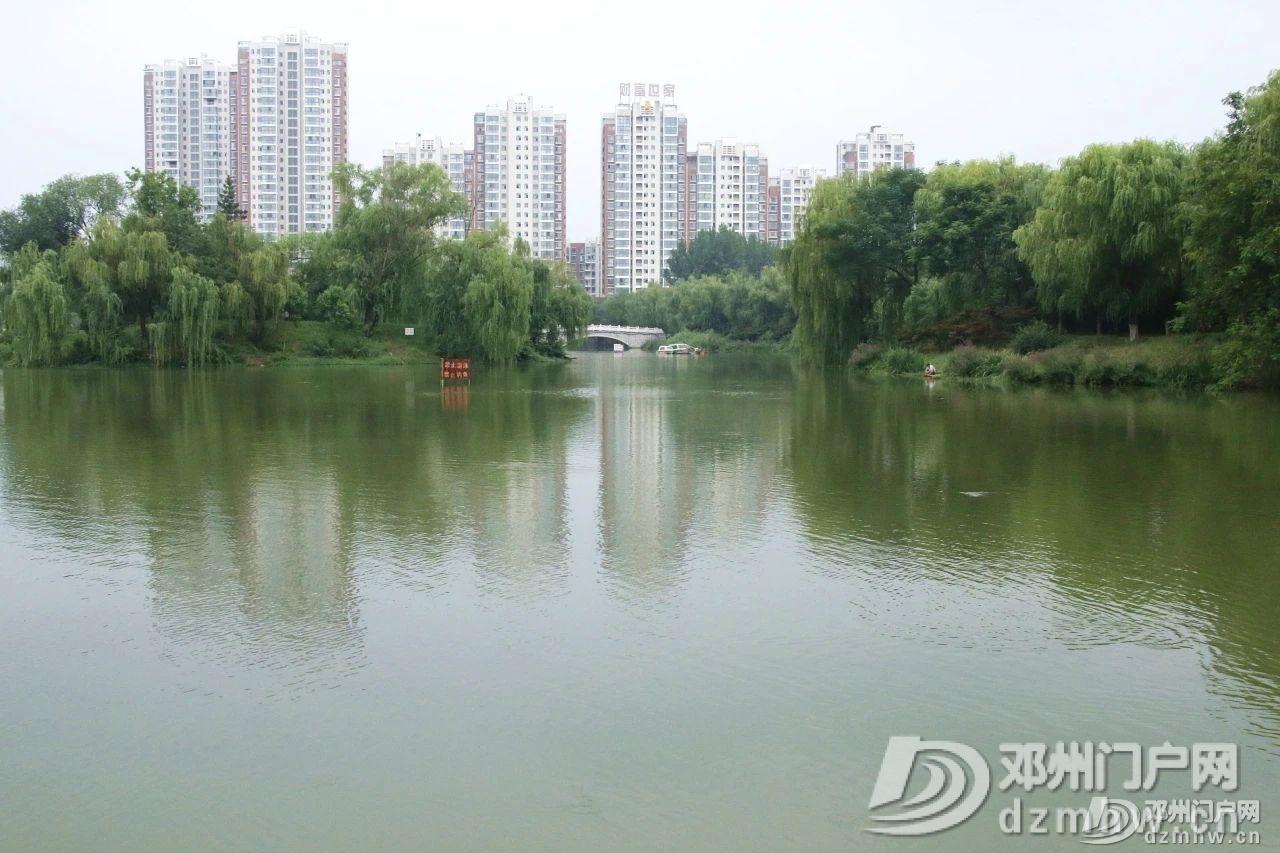 速来围观!暴雨过后的邓州人民公园竟发生了这种变化... - 邓州门户网|邓州网 - 2da58fa399f34f9c084c511f7664d92d.jpg