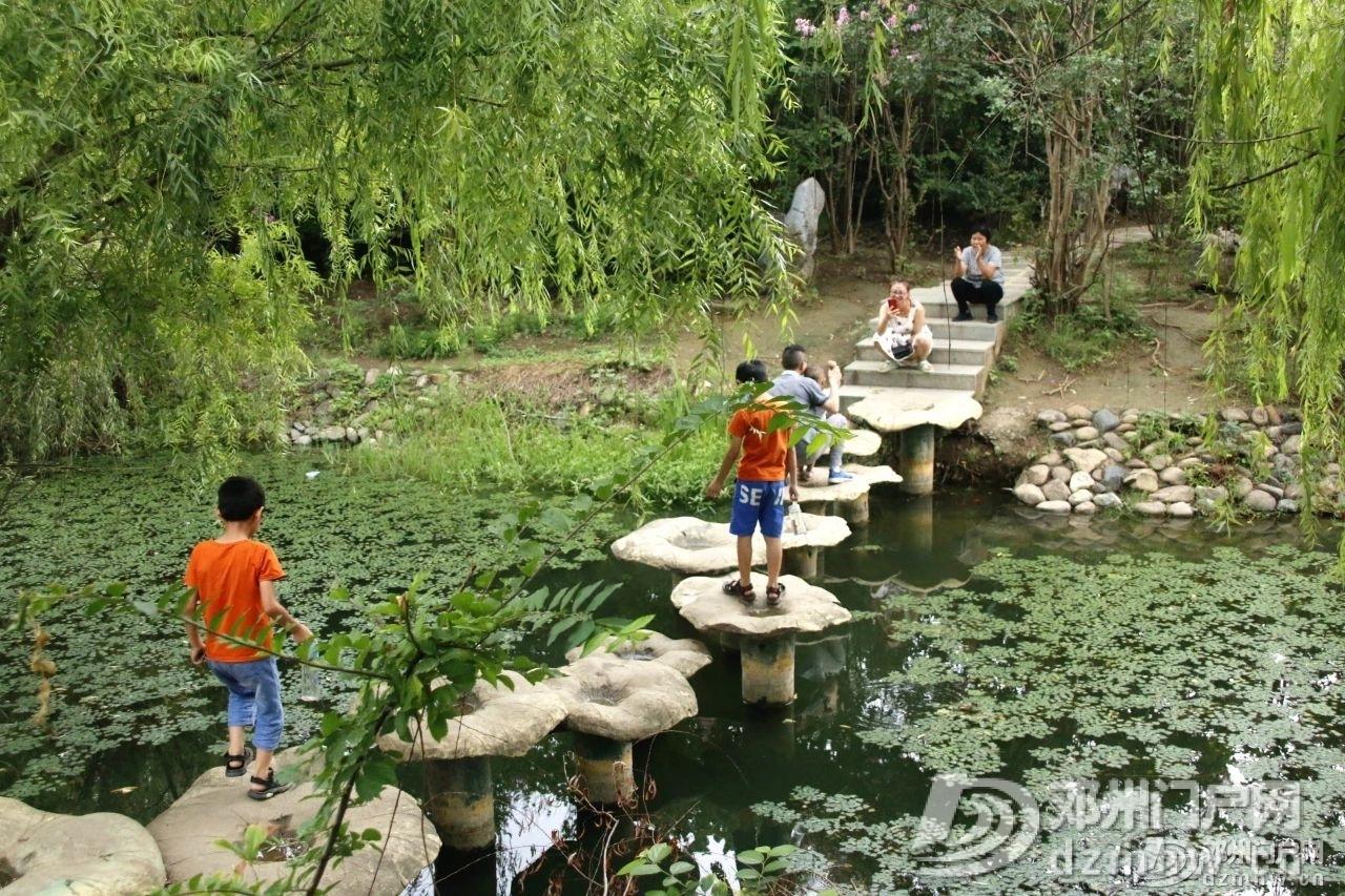速来围观!暴雨过后的邓州人民公园竟发生了这种变化... - 邓州门户网|邓州网 - 9c0b1a6a70326b8e8d48ebe7c8b9028d.jpg