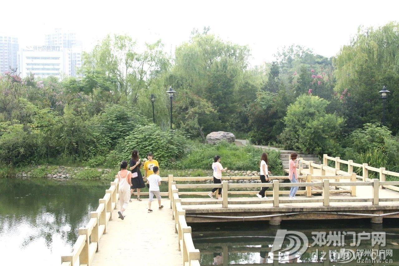 速来围观!暴雨过后的邓州人民公园竟发生了这种变化... - 邓州门户网|邓州网 - 74ad4b1377042fd3c64ab67abdad7fbc.jpg