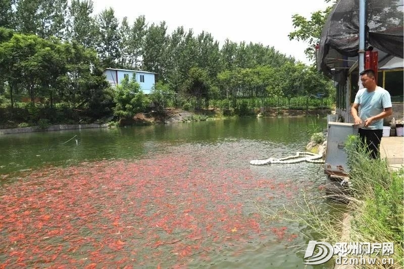 邓州市上半年经济运行持续向好 - 邓州门户网|邓州网 - f0e9855bd9ded6ff7b93c62a25156bef.jpg