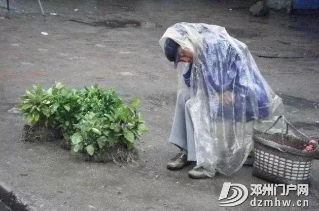 最新!凌晨6点,邓州菜市场拍到的一幕… - 邓州门户网 邓州网 - 77781cad019f9867fdef0b64234e2a44.jpg